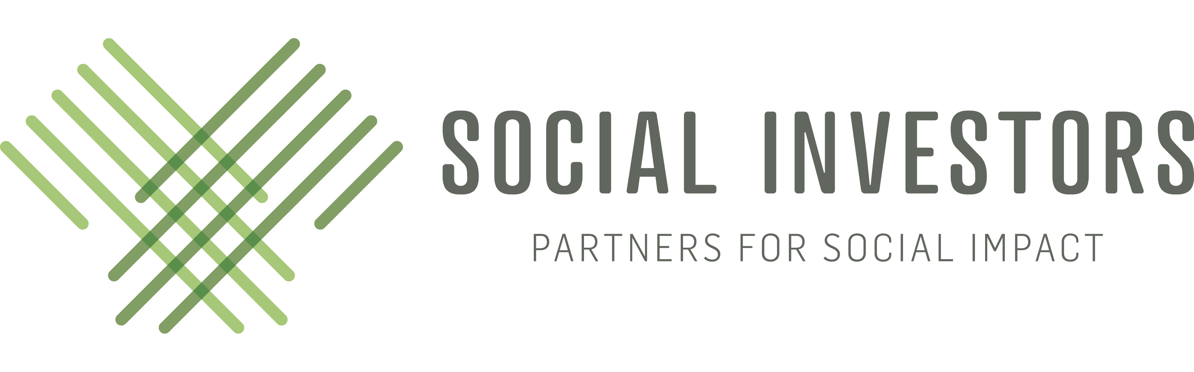 Partners for Social Impact